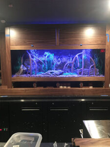 Wooden Style Exterior for an Aquarium