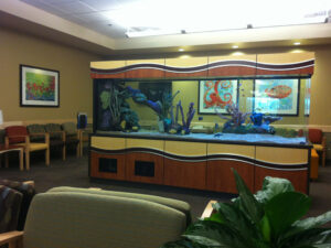 A Large Fish Tank in the Middle of a Waiting Area