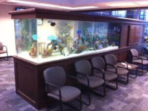 Fish tank Behind Some Chairs