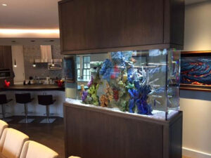 A Kitchen with a Fish Tank